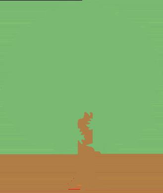 広葉樹のイラスト