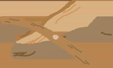 小径木のイラスト